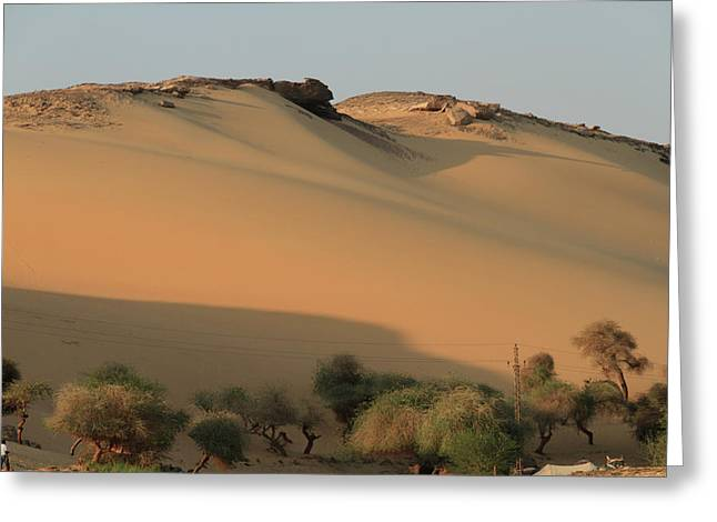 Sahara Greeting Card by Silvia Bruno