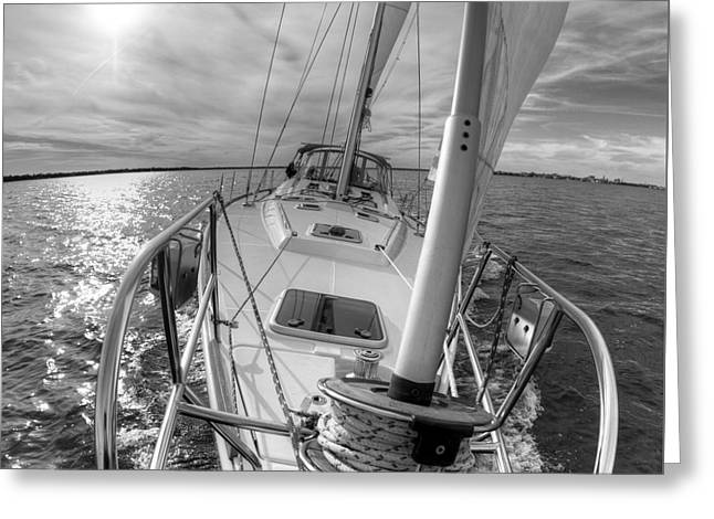 Sailing Yacht Fate Beneteau 49 Black And White Greeting Card