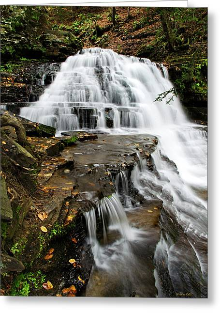 Salt Springs Waterfall Greeting Card