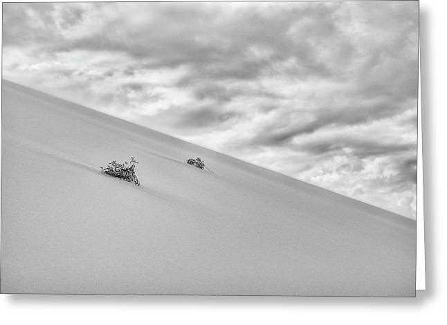 Greeting Card featuring the photograph Sand And Clouds by Hitendra SINKAR