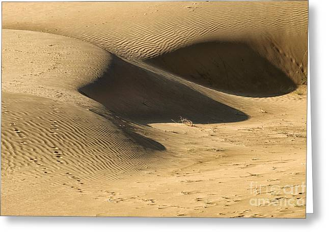 Greeting Card featuring the photograph Sand Dune by Yew Kwang