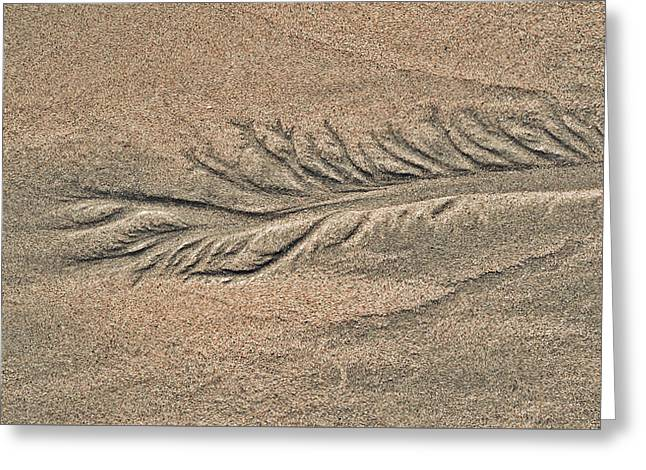 Sand Patterns On The Beach 2 Greeting Card