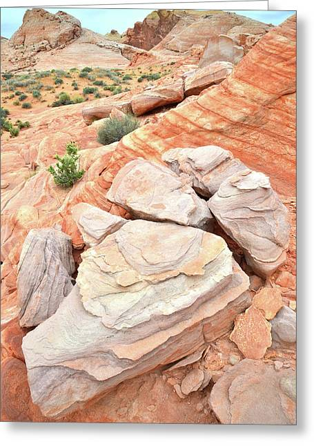 Greeting Card featuring the photograph Sandstone Cove In Valley Of Fire by Ray Mathis