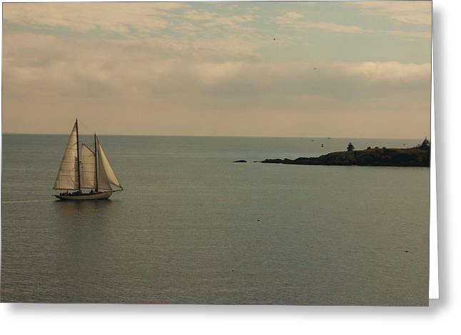 Schooner Greeting Card by Dennis Curry