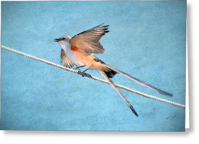 Scissor-tailed Flycatcher Greeting Card