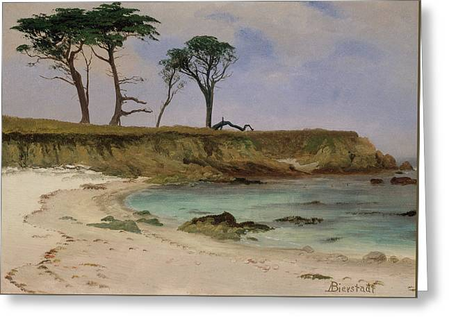 Sea Cove Greeting Card by Albert Bierstadt