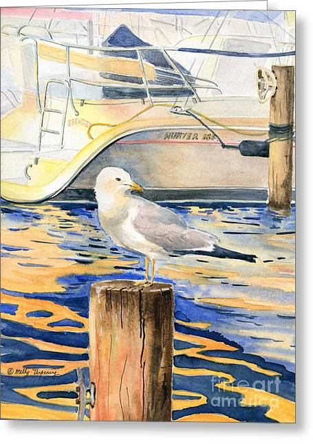 Seagull Greeting Card by Melly Terpening