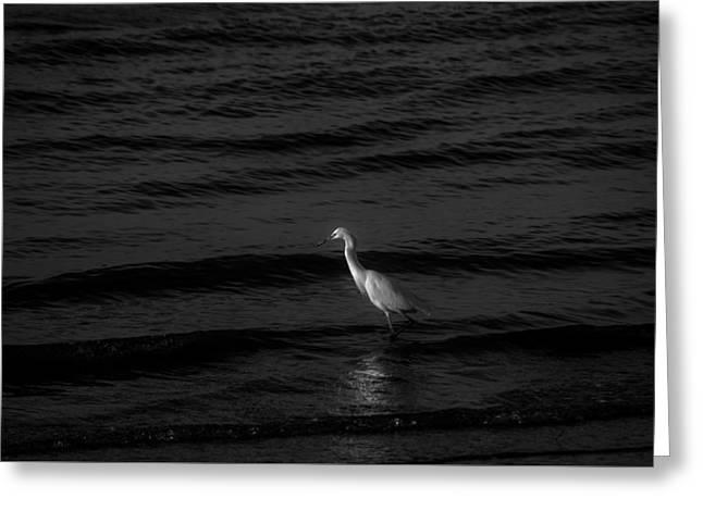 Seascape Gulf Coast, Ms F70w Greeting Card by Otri Park