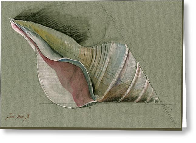 Seashell Art Painting Greeting Card