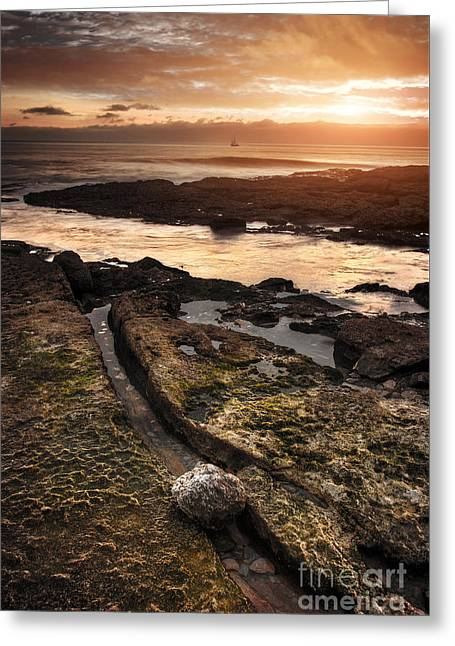 Seashore Sunset Greeting Card by Carlos Caetano