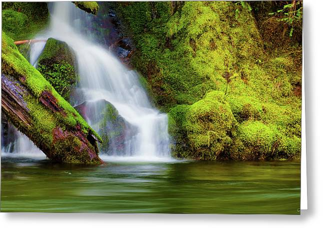 Whte Cascade Greeting Card