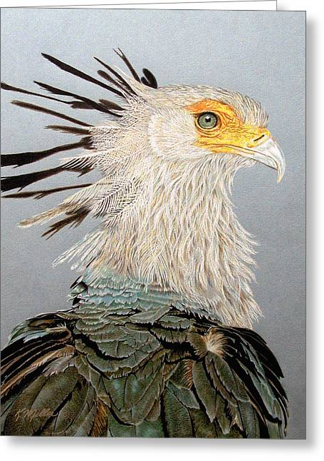 Secretary Bird Greeting Card by Kathie Miller