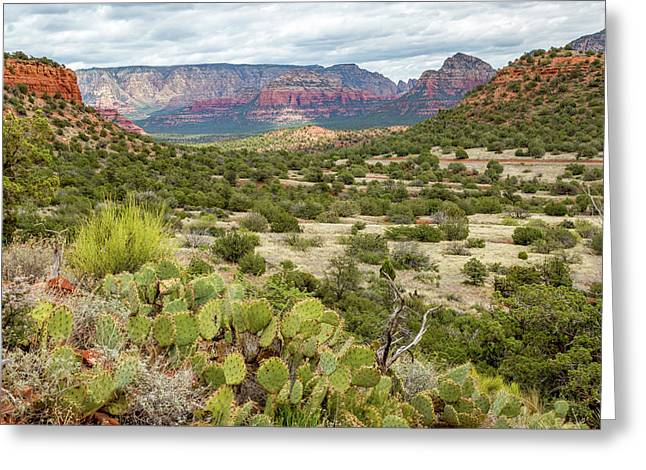 Sedona Greeting Card by Jon Manjeot