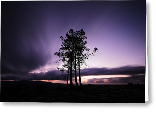 Greeting Card featuring the photograph Sentinels by Antonio Jorge Nunes