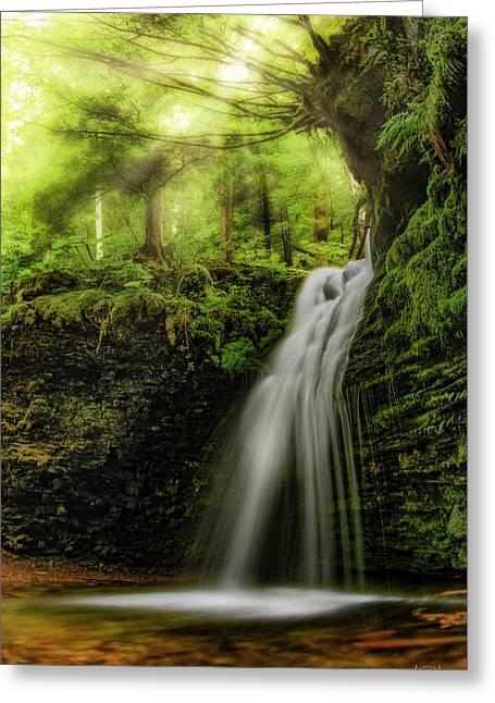 Shadow Falls Greeting Card by Leland D Howard
