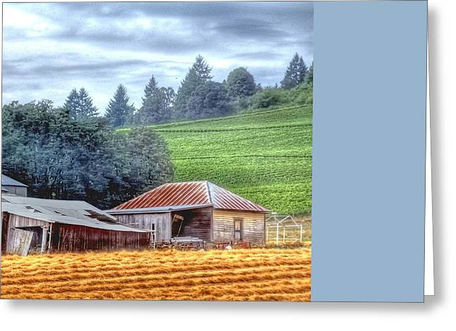 Shed And Grain Bins 17238 Greeting Card by Jerry Sodorff