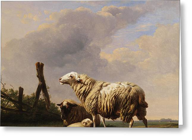 Sheep Greeting Card by Eugene Verboeckhoven
