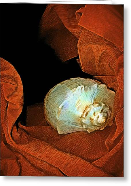Greeting Card featuring the mixed media Shell On Satin by Lynda Lehmann