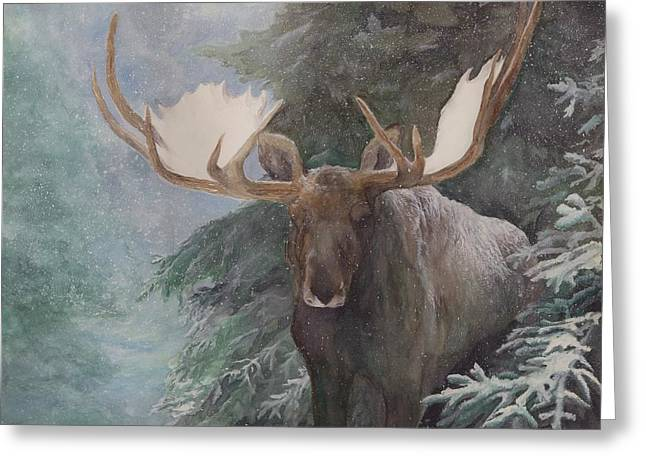 Bull Moose Greeting Cards - Sheltered By The Forest Greeting Card by Nonie Wideman