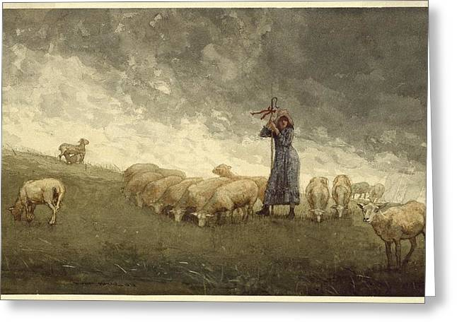 Shepherdess Tending Sheep Greeting Card by Winslow Homer