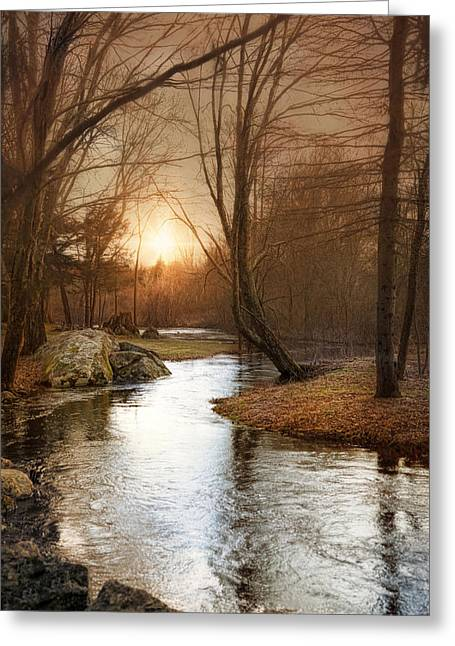 Greeting Card featuring the photograph Silence Is Golden by Robin-Lee Vieira