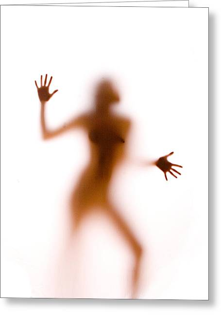 Silhouette 14 Greeting Card