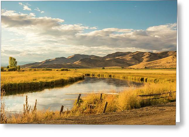 Greeting Card featuring the photograph Silver Creek by Mark Mille