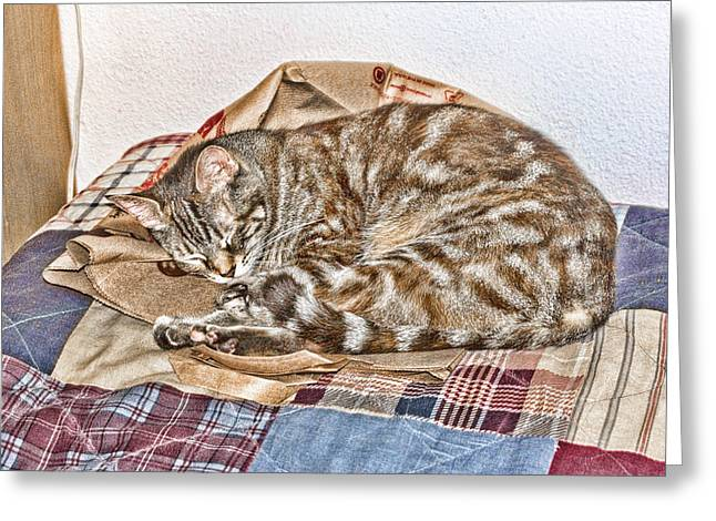 Greeting Card featuring the digital art Sleeping by Photographic Art by Russel Ray Photos