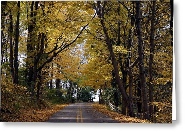 Greeting Card featuring the photograph Sleepy Hollow by Sylvia Hart