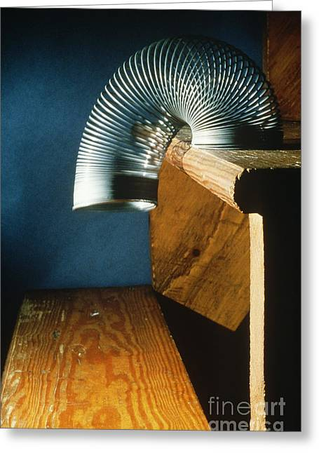 Slinky Toy Greeting Card by Leonard Lessin