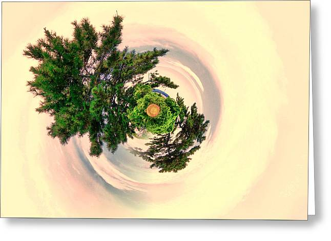 Small Planet 2 Greeting Card
