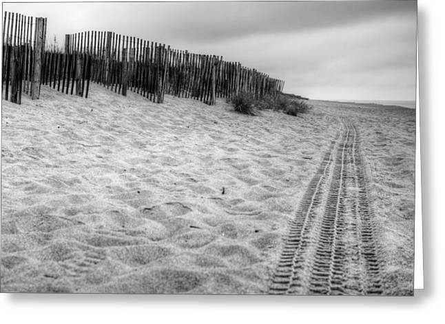 Snow Fence On The Beach Greeting Card