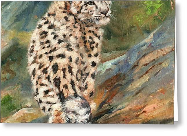 Snow Leopard Cub Greeting Card by David Stribbling