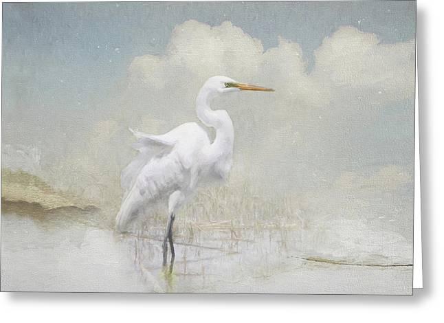 Snowy Egret Greeting Card by Karen Lynch