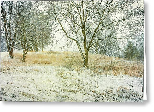 Greeting Card featuring the digital art Snowy Winter Morning by Randy Steele