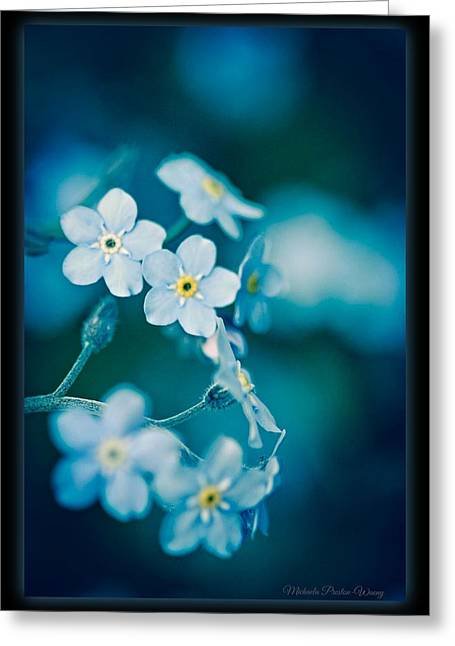 Greeting Card featuring the photograph Soft Blue by Michaela Preston