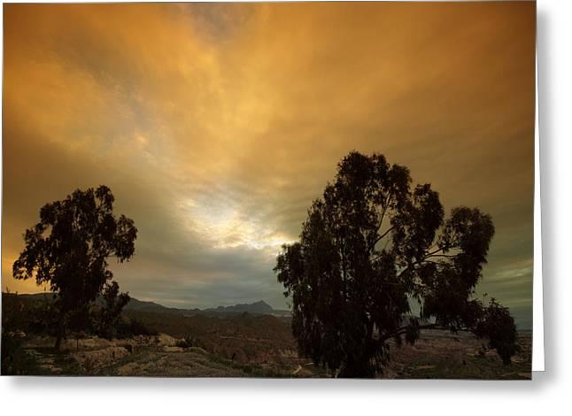 Spanish Landscape Greeting Card by Angel  Tarantella