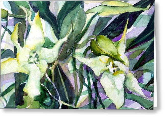 Spider Orchids Greeting Card by Mindy Newman