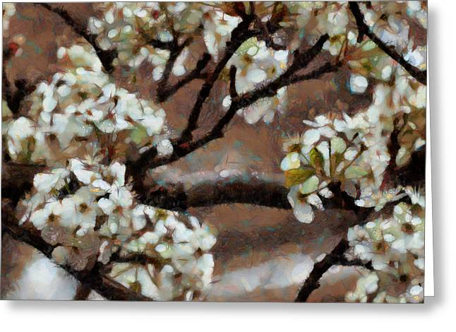 Spring Blossoms Greeting Card by Ann Powell