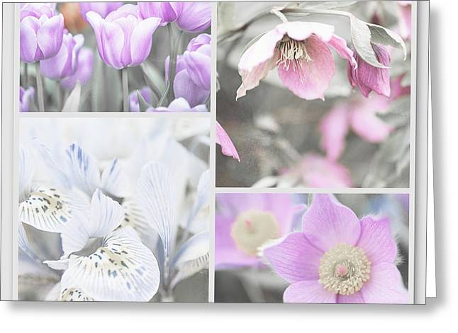 Greeting Card featuring the photograph Spring Flower Collage. Shabby Chic Collection by Jenny Rainbow