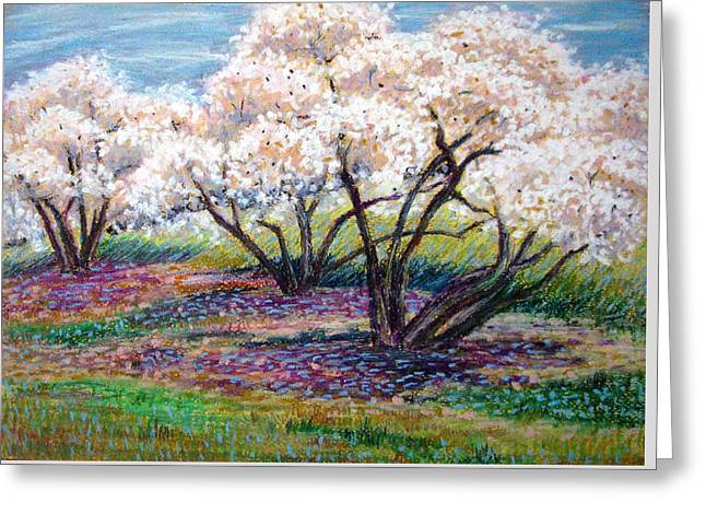 Spring Has Sprung Greeting Card by Art Nomad Sandra  Hansen