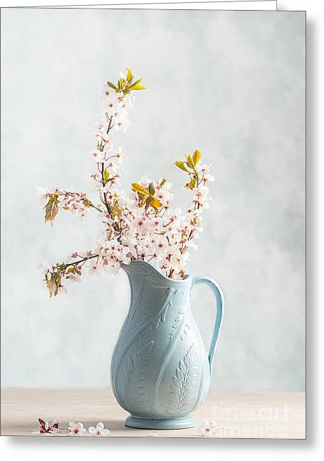 Springtime Blossom Greeting Card by Amanda And Christopher Elwell