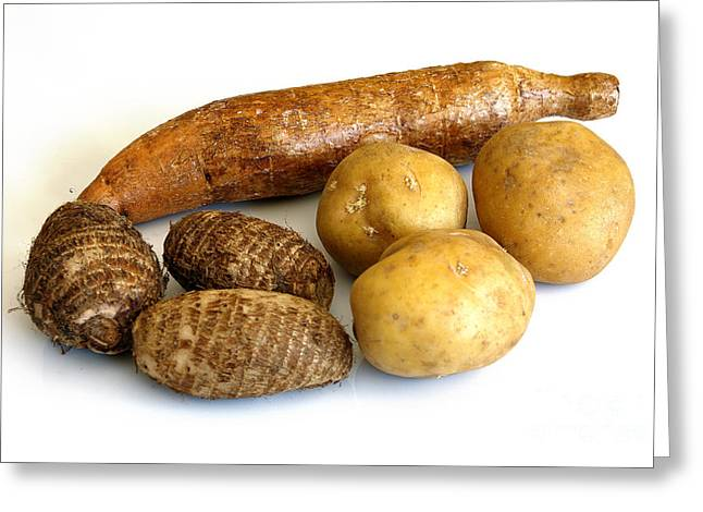 Starchy Tubers Greeting Card