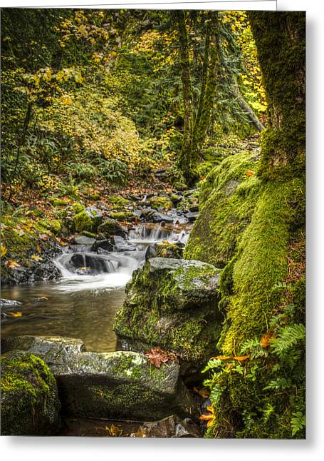 Starvation Creek Greeting Card by Jean Noren