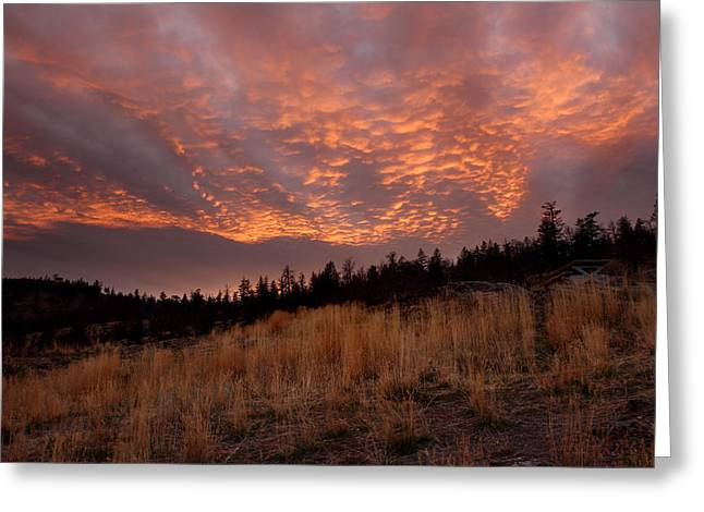 Steelhead Provincial Park Sunset Greeting Card by Pierre Leclerc Photography