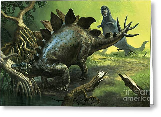 Stegosaurus Greeting Card by English School