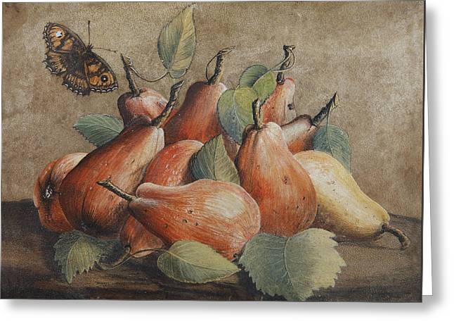 Still Life With Pears And A Butterfly Greeting Card by Giovanna Garzoni