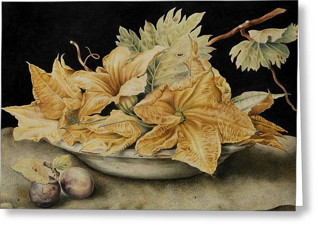 Still Life With Pumpkin Flowers And Vine Leaves Greeting Card