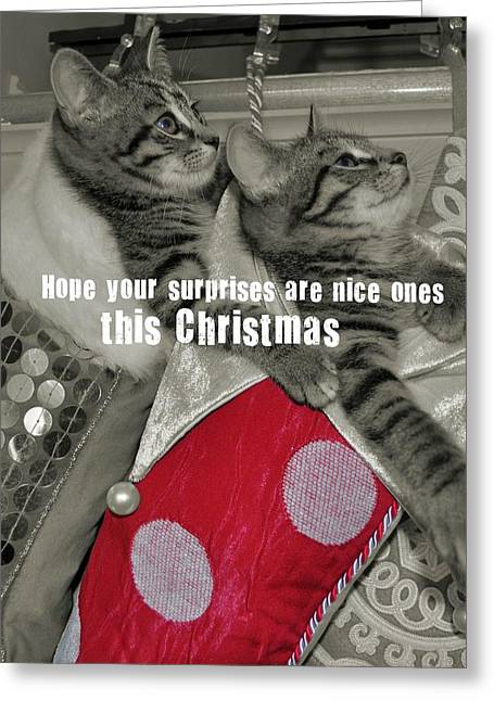 Stocking Stuffers Quote Greeting Card by JAMART Photography