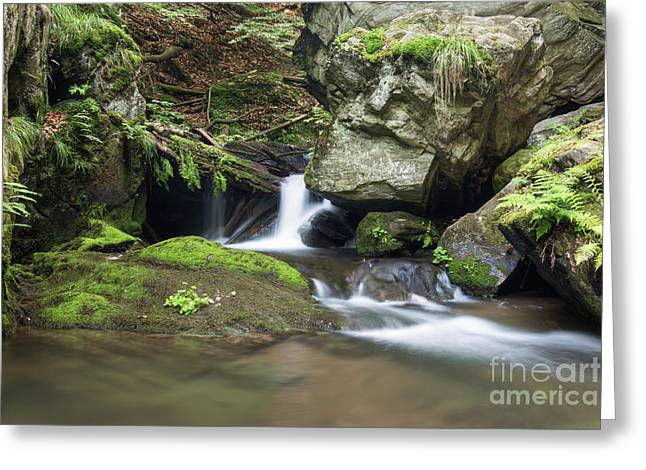 Greeting Card featuring the photograph Stone Guardian Of The Waterfalls - Bizarre Boulder On The Bank by Michal Boubin